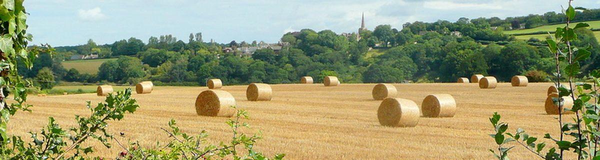Herefordshire Interfaith Group